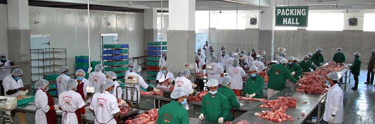 Veal Tenderloin Exporters