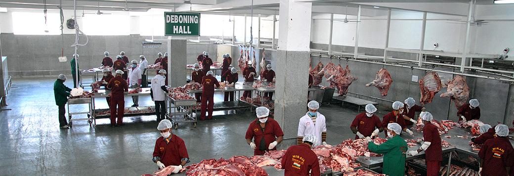 frozen meat exporters